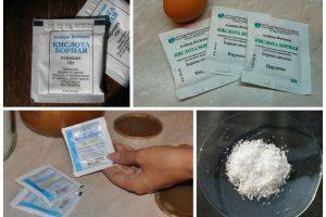 Принцип действия и рецепты применения борной кислоты от тараканов