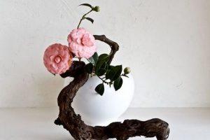 Икебана в интерьере: цветочная философия Востока