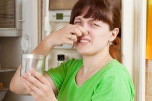 Как убрать запах из холодильника?  Какими могут быть причины запаха в холодильнике?