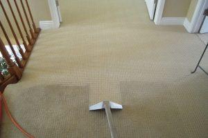 Чистка ковролина: способы и основные правила. Как чистить ковролин в домашних условиях?